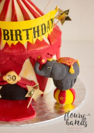 Vintage circus cake 2 elephant